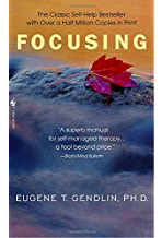 Focusing book by Eugent T. Gendling PhD