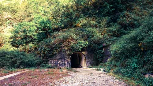 Tunnel in nature